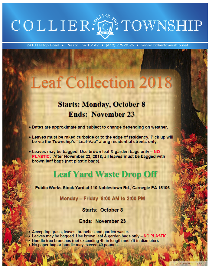 fall leaf clean up